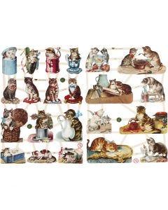 Glansbilleder, katte, 16,5x23,5 cm, 2 ark/ 1 pk.