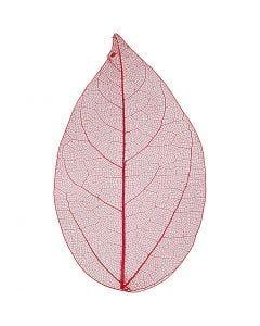 Skeletblade, L: 6-8 cm, rød, 20 stk./ 1 pk.