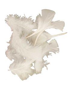 Dun, str. 7-8 cm, hvid, 50 g/ 1 pk.