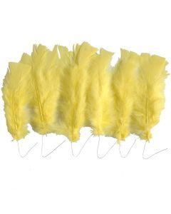 Dun, L: 11-17 cm, gul, 18 bdt./ 1 pk.