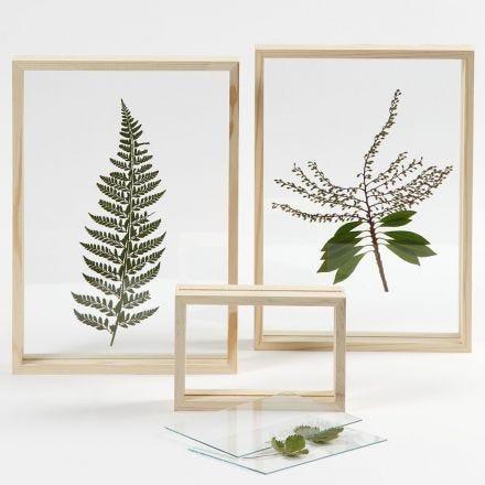 Tørret blad i dobbeltramme