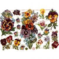 Glansbilleder, blomster, 16,5x23,5 cm, 3 ark/ 1 pk.