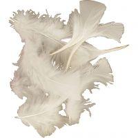 Dun, str. 7-8 cm, hvid, 500 g/ 1 pk.