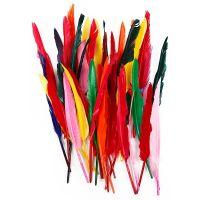 Fjer, L: 29-31 cm, ass. farver, 100 stk./ 1 pk.