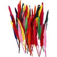 Indianerfjer, L: 29-31 cm, ass. farver, 50 stk., 50 stk./ 1 pk.