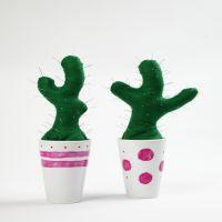 Kaktus nålepude